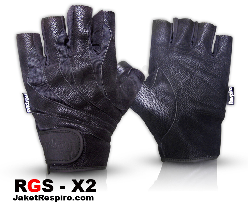 RGS-X2